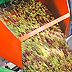 Convegno: la centralità del Frantoio nella Filiera olivicolo-olearia