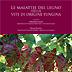 Manuale illustrato: Le malattie del legno della vite di origine fungina