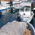 Pescaturismo e Ittiturismo
