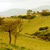 Villamassargia, paesaggio rurale
