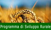 Speciale Programma di Sviluppo Rurale