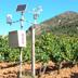 Zonazione viticola