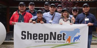 progetto SHEEPNET