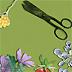 Pubblicazione: Le erbe e le piante spontanee di interesse gastronomico