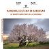 Pubblicazione: Mandorlicoltura in Sardegna. Le varietà autoctone della Sardegna